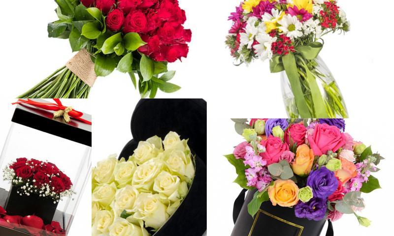 Salon Çiçeği Tasarımları